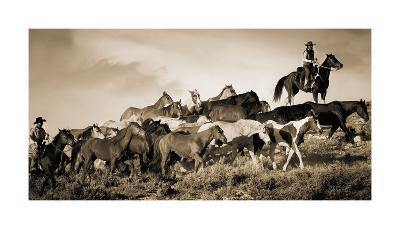 Gathering the Herd-Wendy Caro-Giclee Print