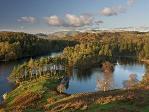 Autumn Colours at Tarn Hows Nearr Hawkshead, Lake District, Cumbria, England by Gavin Hellier