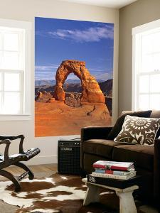 Delicate Arch, Arches National Park, Utah, USA by Gavin Hellier