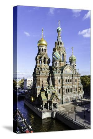Domes of Church of the Saviour on Spilled Blood, St. Petersburg, Russia
