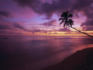 Gibbes Bay at Sunset, Barbados, West Indies, Caribbean, Central America by Gavin Hellier