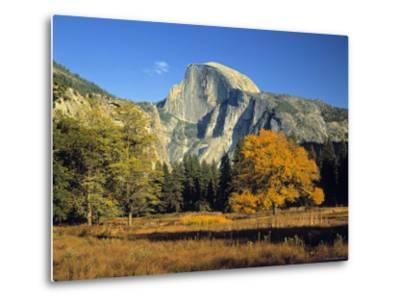 Half Dome, Yosemite Np, California, USA