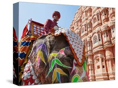 India, Rajasthan, Jaipur, Ceremonial Decorated Elephant Outside the Hawa Mahal, Palace of the Winds