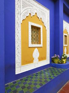 Majorelle Gardens, Marrakesh, Morocco, North Africa by Gavin Hellier