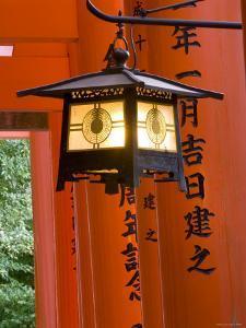Red Torii Gates, Fushimi Inari Taisha Shrine, Kyoto, Japan by Gavin Hellier