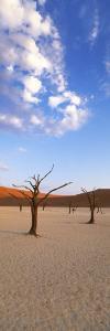 Sossusvlei, Namib-Naukluft Park, Namibia, Africa by Gavin Hellier