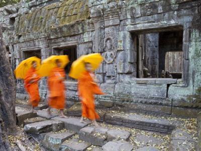 Ta Phrohm Temple, Angkor Wat, Siem Reap, Cambodia by Gavin Hellier