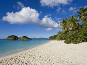 Trunk Bay, St. John, U.S. Virgin Islands, West Indies, Caribbean, Central America by Gavin Hellier