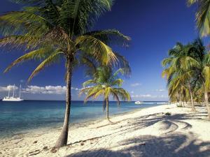 Tropical Beach on Isla de la Juventud, Cuba by Gavriel Jecan