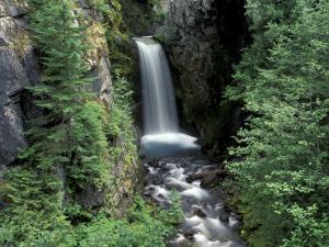 Waterfall and Lush Foliage, Mt. Rainier National Park, Washington, USA by Gavriel Jecan