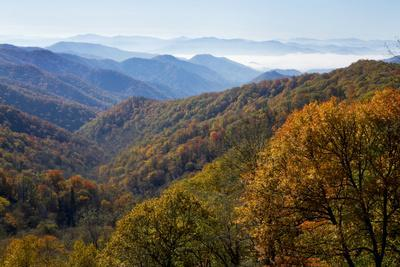 Autumn color in the valley, Great Smoky Mountain National Park, Tennessee
