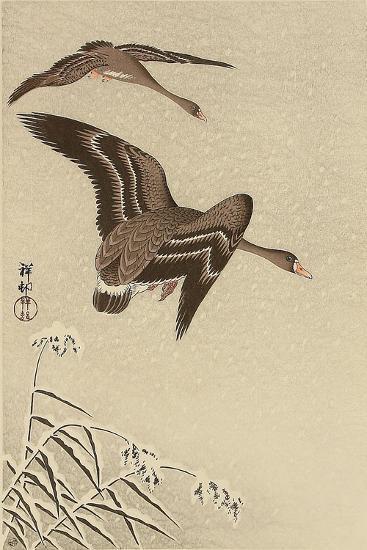 Geese in Snow Falling Sky-Koson Ohara-Giclee Print
