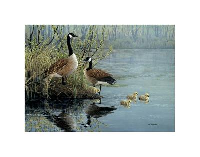 Geese In Spring-Don Li-Leger-Art Print