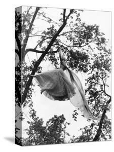 Vogue - July 1953 - Ballgown Takes Flight by Gene Moore
