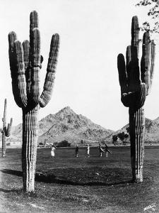 Golf in the Desert by General Photographic Agency