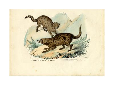 Genet, 1863-79-Raimundo Petraroja-Giclee Print