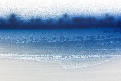 Genetically Modified E. Coli Bacteria-Dr^ Jeremy-Photographic Print