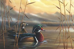 Wood Ducks by Geno Peoples