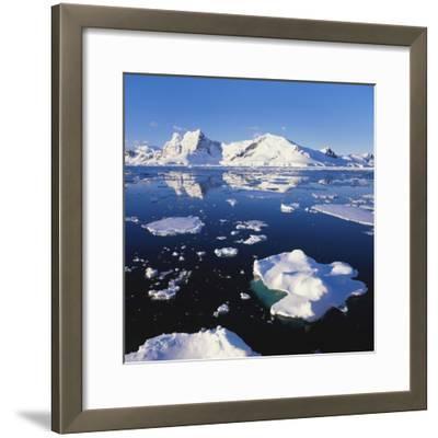 Ice Floe on the Antarctic Peninsula