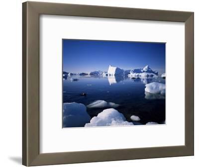Ice Scenery and Seal, Antarctica, Polar Regions