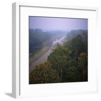 Morning Mists in Rio Negro Region of Amazon Rainforest, Amazonas State, Brazil, South America