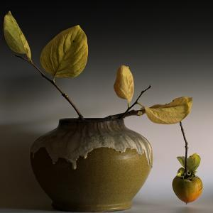Still Life with Persimmon by Geoffrey Ansel Agrons