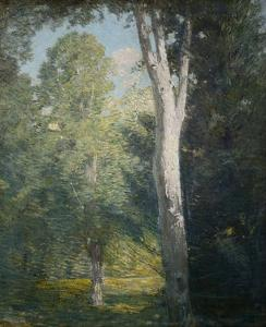 Painting of Birch Trees in Forest by Julian Alden Weir by Geoffrey Clements