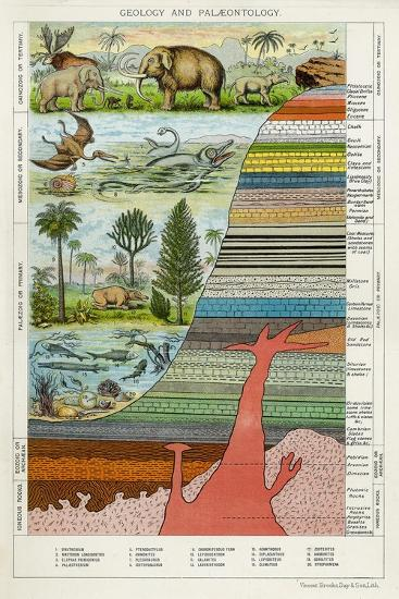 Geology and Palaeontology, C1880--Giclee Print