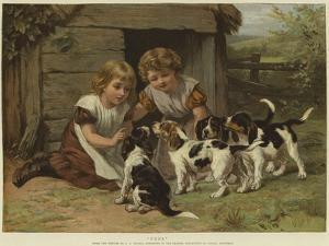 Pups by George Augustus Holmes