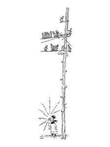 A boy blows a whistle at the foot of a telephone pole filled with birds - New Yorker Cartoon by George Booth