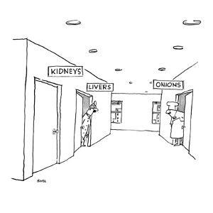 A hospital hallway with signs over the doors.  One reads 'Kidneys,' the ot? - New Yorker Cartoon by George Booth