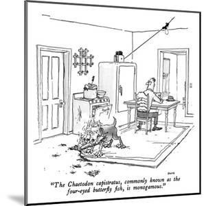 """""""The Chaetodon capistratus, commonly known as the four-eyed butterfly fish…"""" - New Yorker Cartoon by George Booth"""