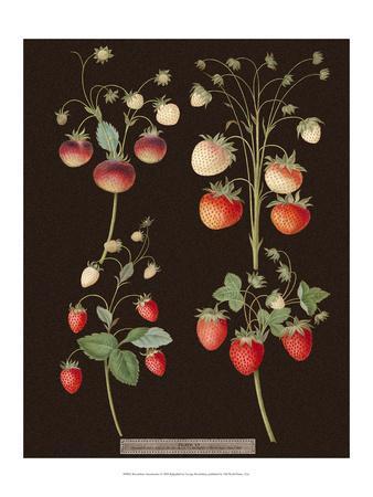 Brookshaw Strawberries