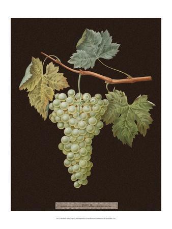 Brookshaw White Grapes