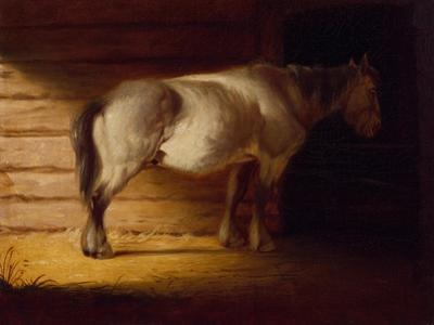 Old Field Horse, by 1856