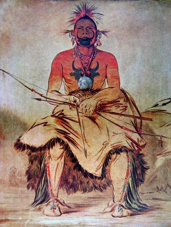 Buffalo Bull, 1835