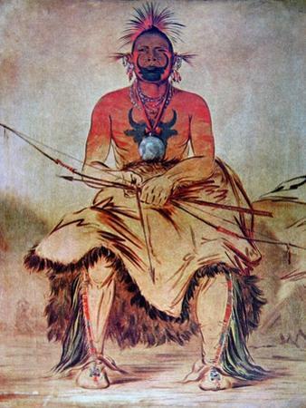 Buffalo Bull, 1835 by George Catlin