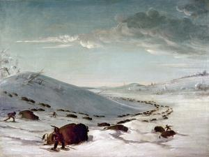 Buffalo Chase In Winter by George Catlin