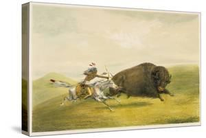 Buffalo Hunt Chase by George Catlin