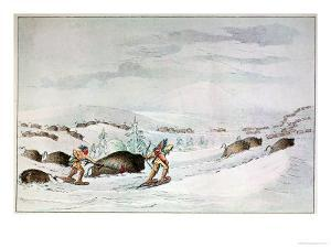 Hunting Buffalo on Snow-Shoes by George Catlin