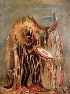 The White Buffalo, c.1840 by George Catlin