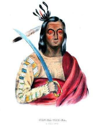 Moukaushka ('The Trembling Earth'), a Yankton Sioux chief