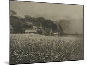The Onion Field by George Davison