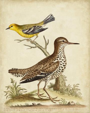 Antique Bird Menagerie I