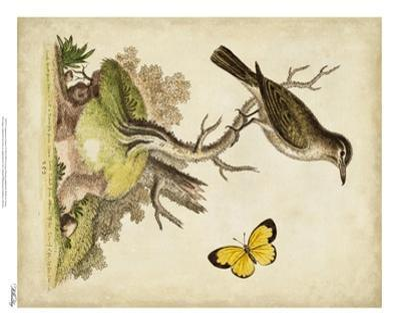 Companions in Nature I
