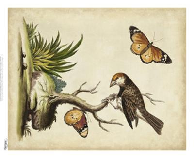 Companions in Nature II