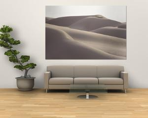 Several Sand Dunes Appear to Rise Like Giant Waves by George F. Mobley
