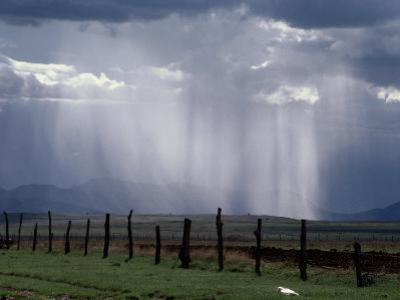 Veils of Rain Stream from Sunlit Clouds over Farmland by George Grall