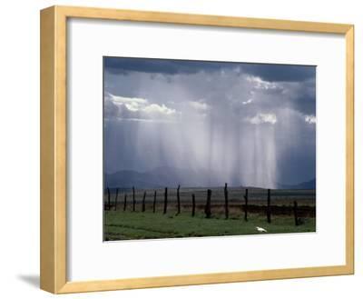 Veils of Rain Stream from Sunlit Clouds over Farmland