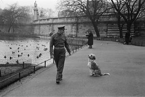 Guardsmen, Circa 1948 by George Greenwell